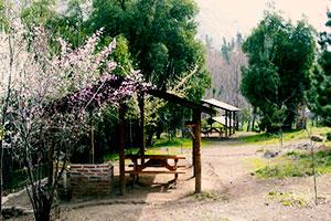 Zona de camping y picnic